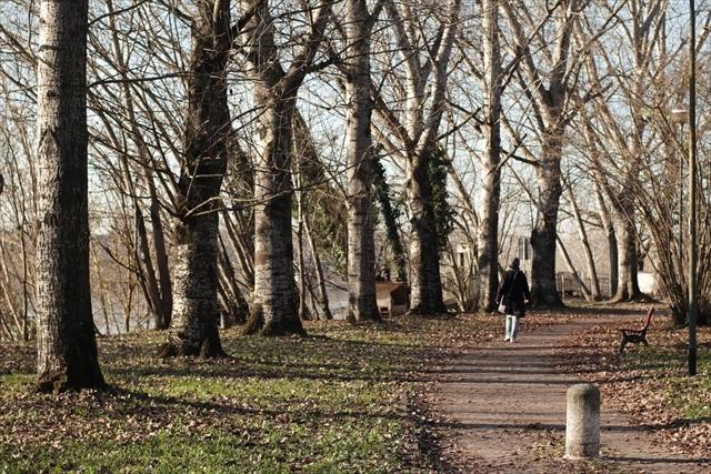 真冬のポー川の風景です_d0047461_14121933.jpg
