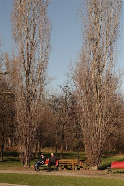 真冬のポー川の風景です_d0047461_14122029.jpg