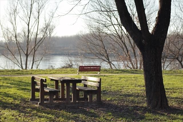 真冬のポー川の風景です_d0047461_14133396.jpg