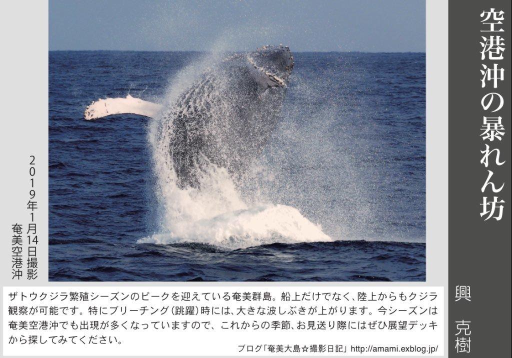 12/31 よいお年を_a0010095_16052464.jpg