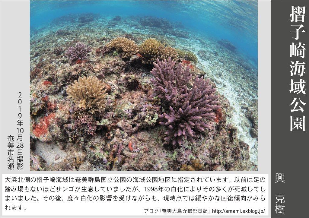 12/31 よいお年を_a0010095_16064299.jpg