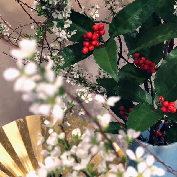 正月の花2020_c0134902_22281613.jpg