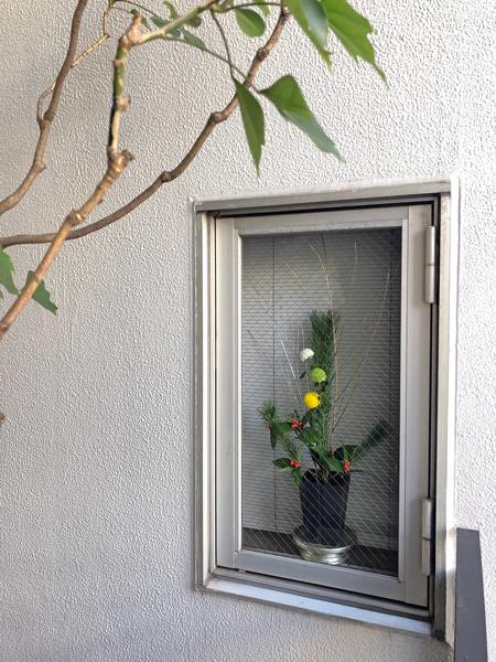 正月の花2020_c0134902_22282898.jpg