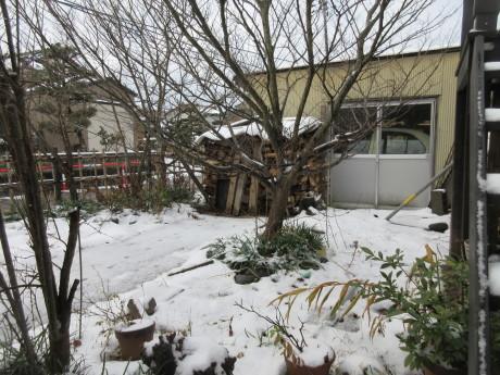 雪の元日_a0203003_19215482.jpg
