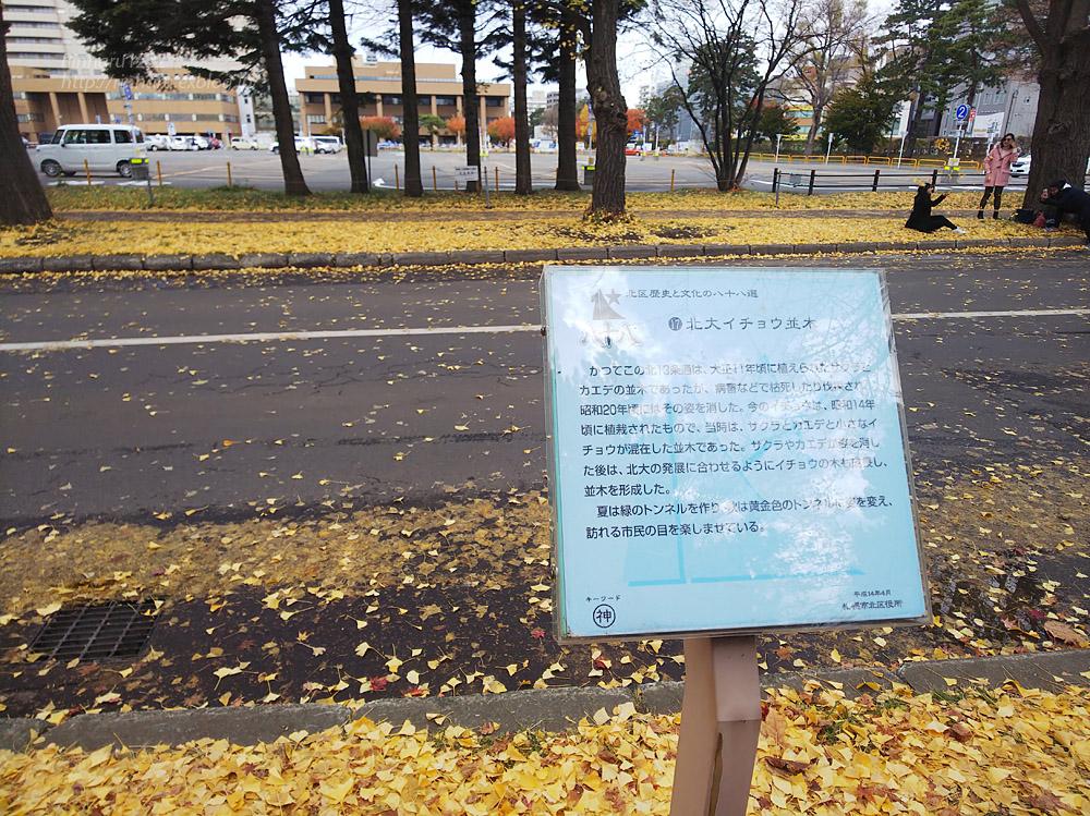 2019.11.9 北海道大学を散策♬_f0250322_21101290.jpg