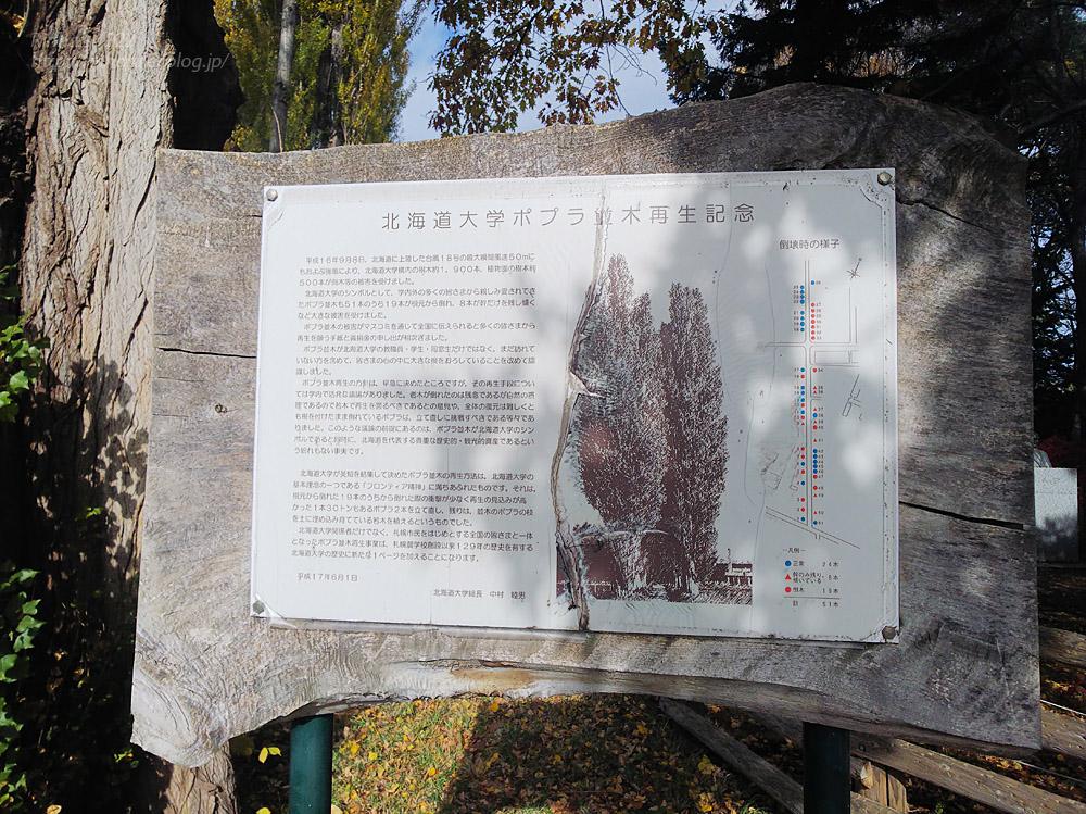 2019.11.9 北海道大学を散策♬_f0250322_21104055.jpg
