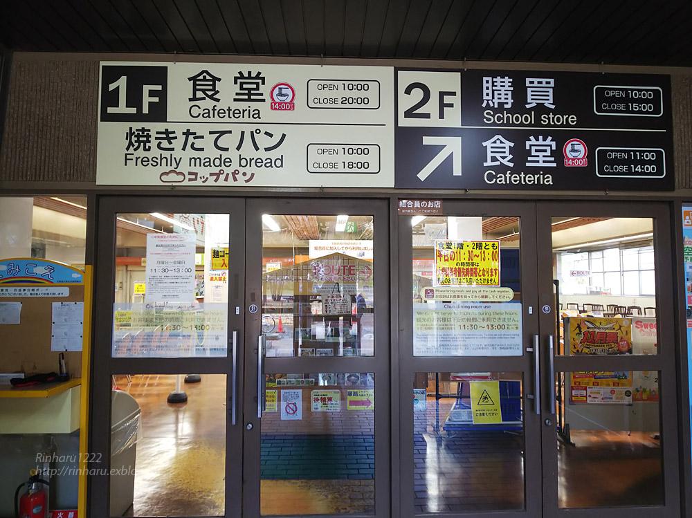 2019.11.9 北海道大学を散策♬_f0250322_2111316.jpg