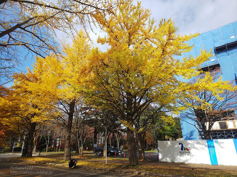 2019.11.9 北海道大学を散策♬_f0250322_21131161.jpg