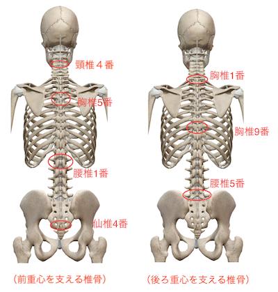 ぎっくり腰予防には、バンザイするとよい? 〜ある日の施術より〜_e0073240_14260078.jpg
