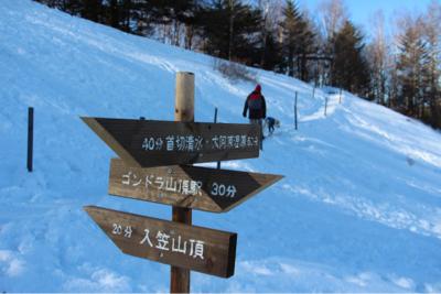 お山へハイキング〜④元旦編_e0293553_18091333.jpg