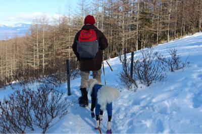 お山へハイキング〜④元旦編_e0293553_18134733.jpg