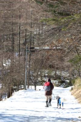 お山へハイキング〜④元旦編_e0293553_18144198.jpg