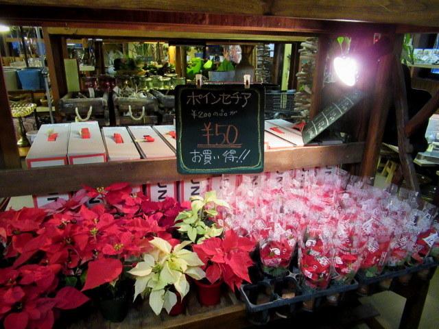 追分・FLOWER FIELD Gardens * お正月用のお花も雑貨もお買い得♪_f0236260_18300745.jpg