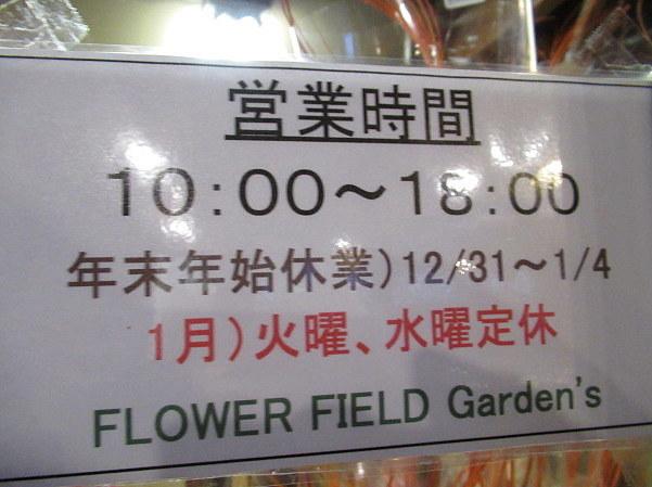 追分・FLOWER FIELD Gardens * お正月用のお花も雑貨もお買い得♪_f0236260_18580834.jpg