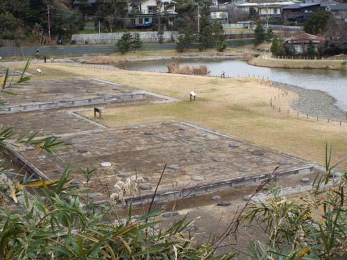 友人と鎌倉で見たこと_f0211178_17211411.jpg