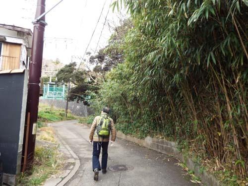 友人と鎌倉で見たこと_f0211178_17215795.jpg