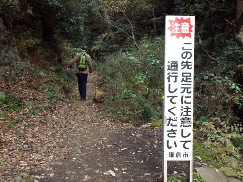 友人と鎌倉で見たこと_f0211178_17221604.jpg