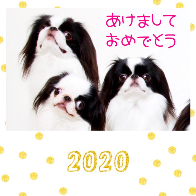 令和2年おめでとう🎊_a0155999_09273955.jpg