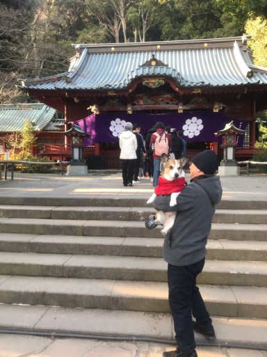 伊豆山神社で初詣_f0101201_22540963.jpg