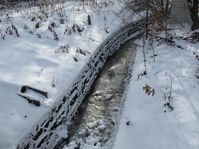 1月1日(水)・・・あけましておめでとうございます_f0202703_03150337.jpg