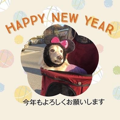 新年快乐!_f0004006_12070590.jpg