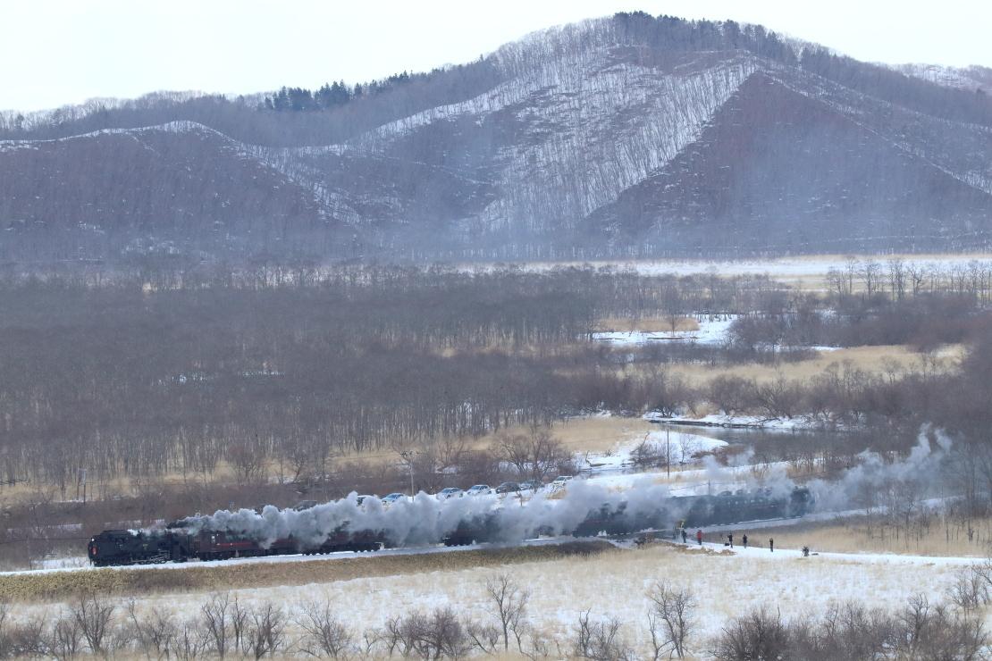 湿原を汽車が通る - 2019年・釧網線 -_b0190710_17552639.jpg