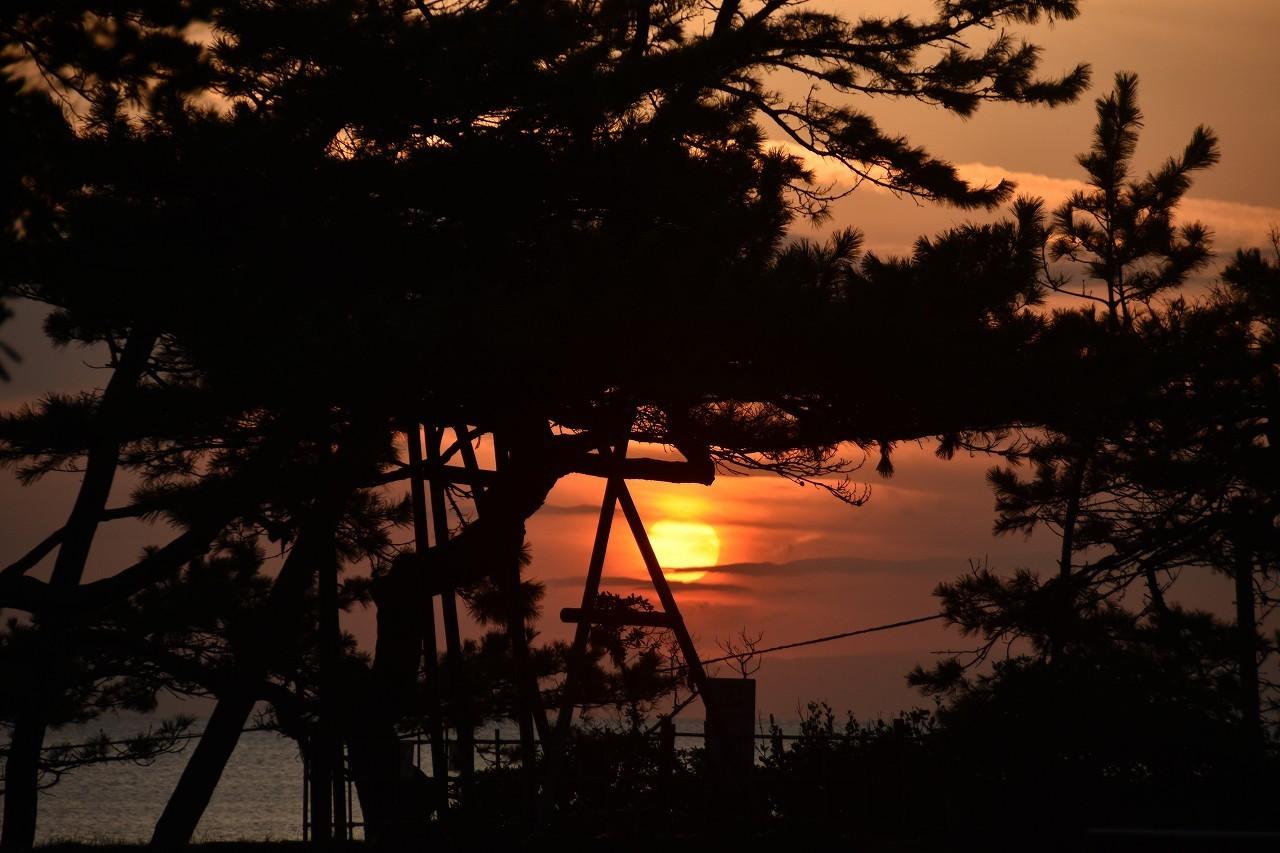 私の声にふりむいて 渚の丘で・・・_d0065116_23263675.jpg
