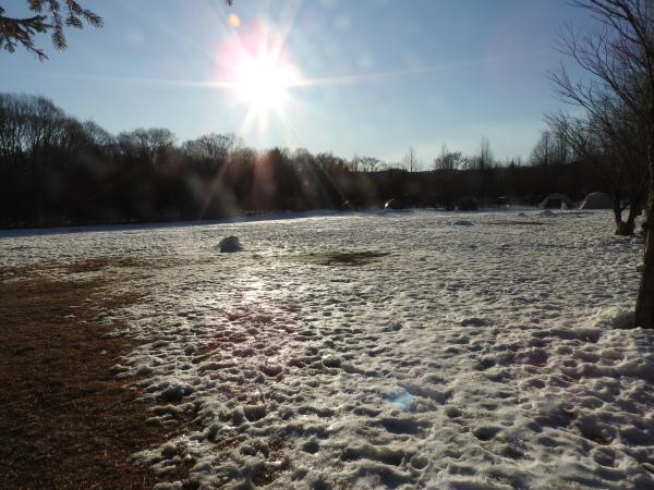 今週末の天気と気温(2020年1月2日)_b0174425_20511421.jpg