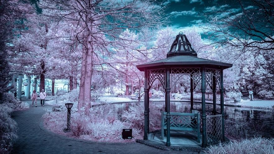 発狂系の雪が降った都市公園_d0353489_22102043.jpg