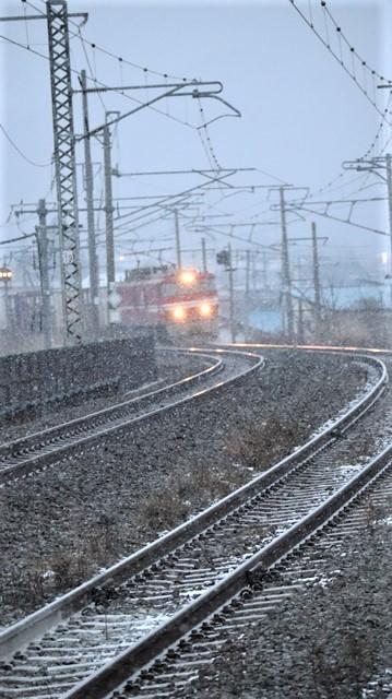 青森駅は還暦を迎えました。そして、大改装中です。青い森鉄道と雪景色、雪の中を激走する貨物列車とモーリーくん_d0181492_23455690.jpg