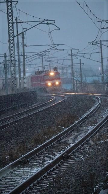 青森駅は還暦を迎えました。そして、大改装中です。青い森鉄道と雪景色、雪の中を激走する貨物列車とモーリーくん_d0181492_23460489.jpg