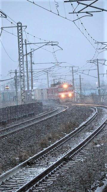 青森駅は還暦を迎えました。そして、大改装中です。青い森鉄道と雪景色、雪の中を激走する貨物列車とモーリーくん_d0181492_23461286.jpg