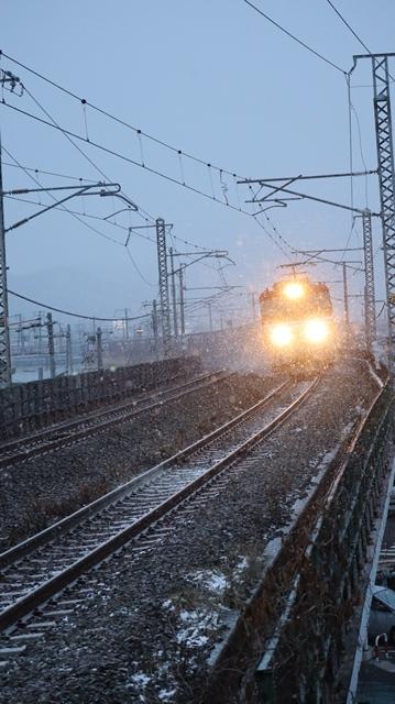 青森駅は還暦を迎えました。そして、大改装中です。青い森鉄道と雪景色、雪の中を激走する貨物列車とモーリーくん_d0181492_23470235.jpg