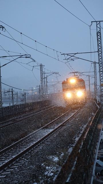 青森駅は還暦を迎えました。そして、大改装中です。青い森鉄道と雪景色、雪の中を激走する貨物列車とモーリーくん_d0181492_23471229.jpg
