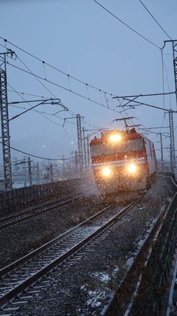 青森駅は還暦を迎えました。そして、大改装中です。青い森鉄道と雪景色、雪の中を激走する貨物列車とモーリーくん_d0181492_23473240.jpg
