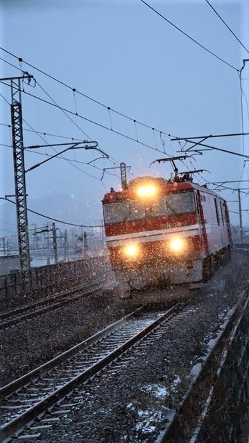 青森駅は還暦を迎えました。そして、大改装中です。青い森鉄道と雪景色、雪の中を激走する貨物列車とモーリーくん_d0181492_23474108.jpg