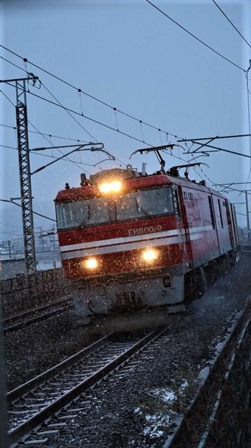 青森駅は還暦を迎えました。そして、大改装中です。青い森鉄道と雪景色、雪の中を激走する貨物列車とモーリーくん_d0181492_23475253.jpg