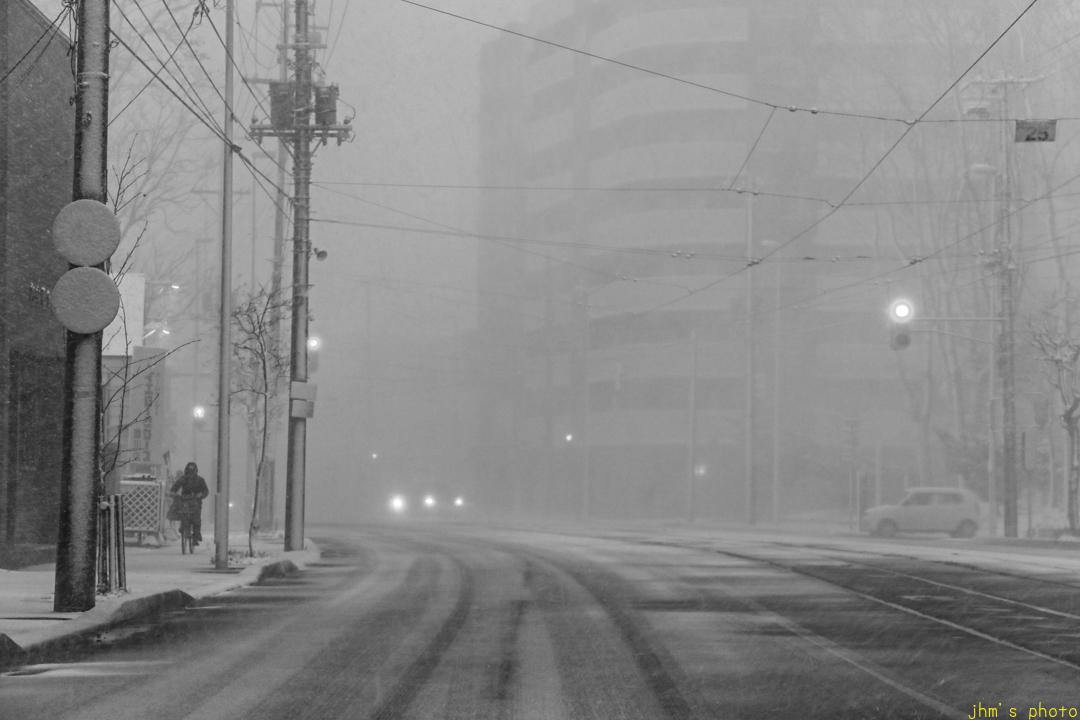 正月の吹雪_a0158797_00321180.jpg