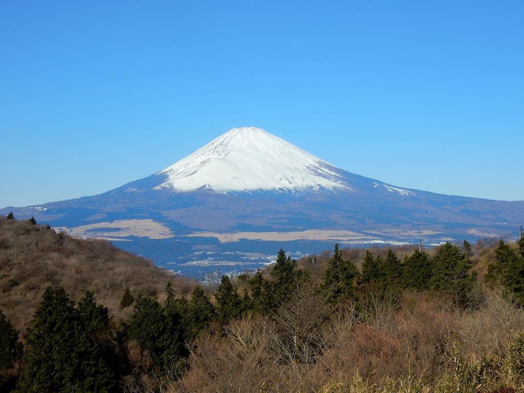 ようやく富士山!_a0148206_17591233.jpg