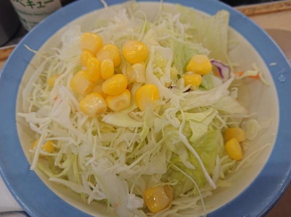 1/3 創業ビーフカレー並盛 & 生野菜サラダ @松屋_b0042308_18144970.jpg