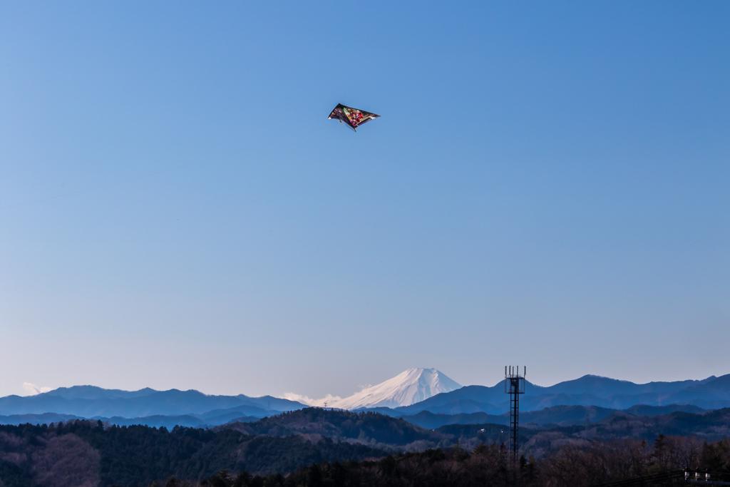 あさひ山展望公園からの富士山と柏木山_b0010915_20103416.jpg