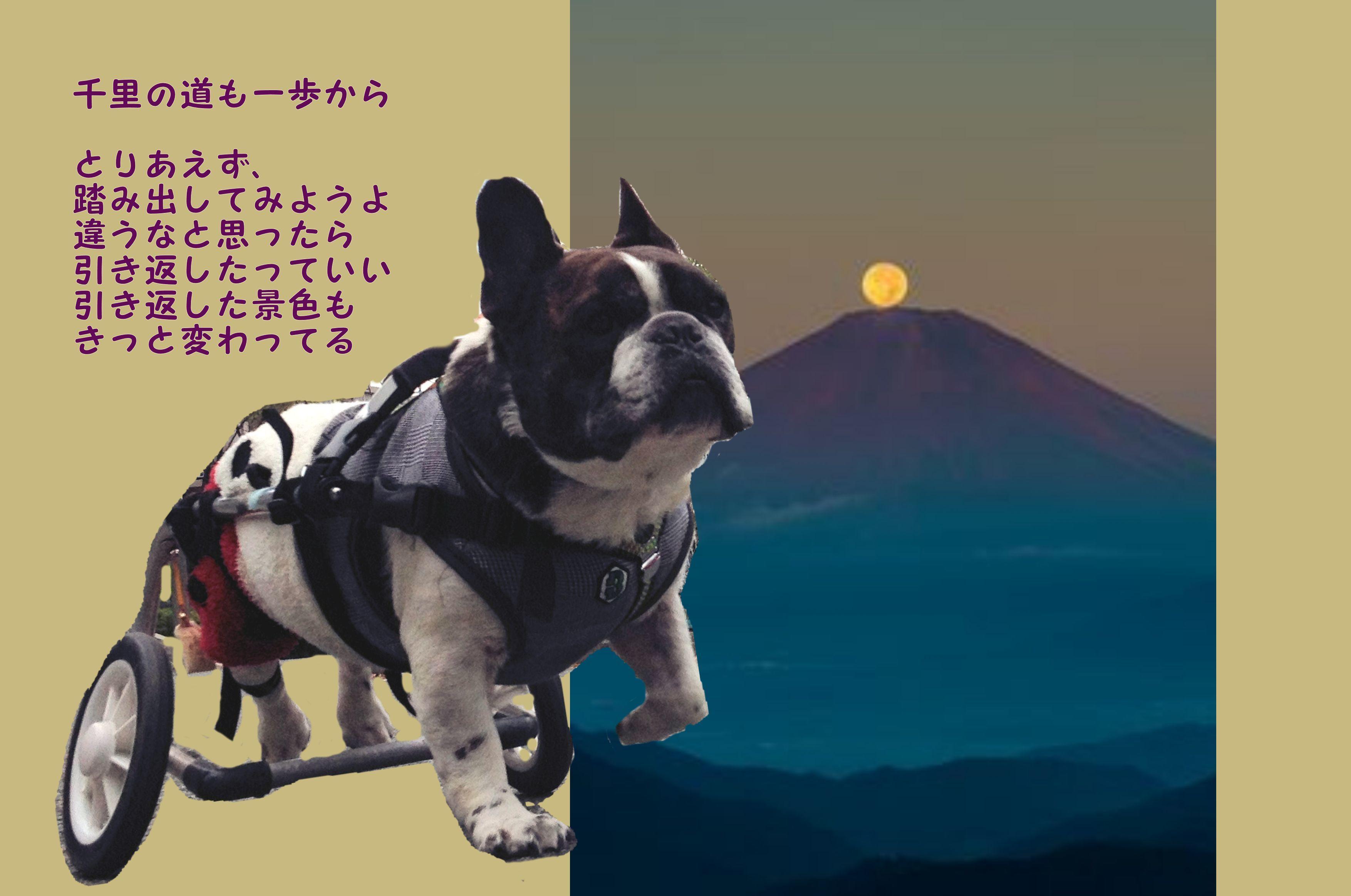 2020年空太郎カレンダー_b0307951_22092491.jpg