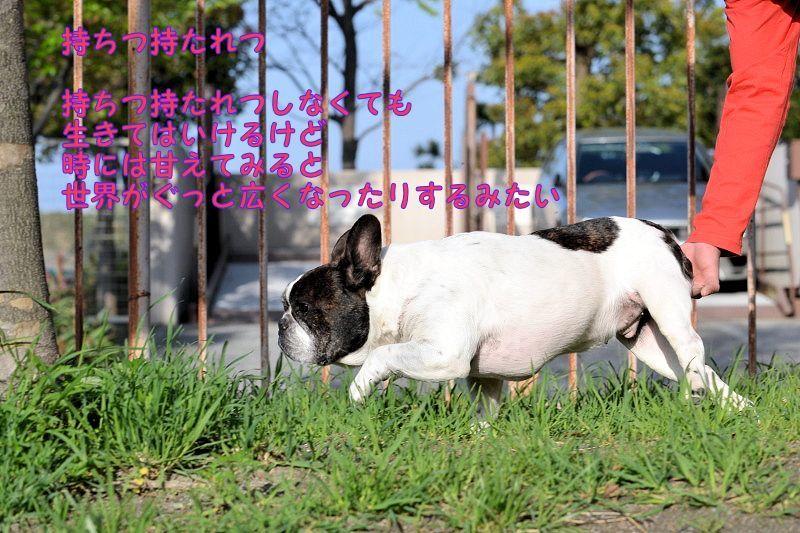 2020年空太郎カレンダー_b0307951_22240246.jpg
