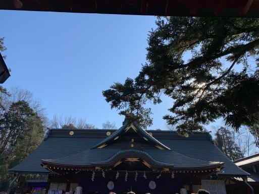 母校明治大学が熾烈な3位争いの最中、山田パンダは子年の大國魂神社に参拝中。_b0096957_15371263.jpeg