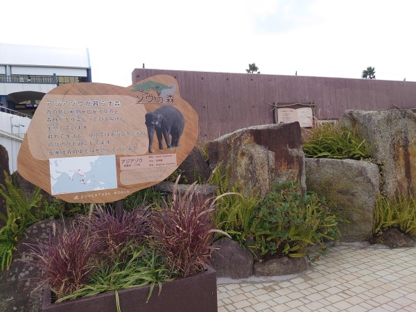 ゾウの森の住み心地はいかがですか_b0024758_13021800.jpg