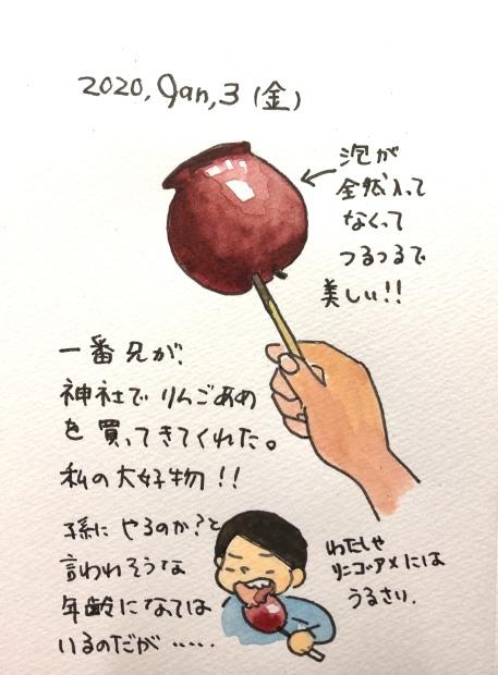 りんご飴_f0072976_18341559.jpeg