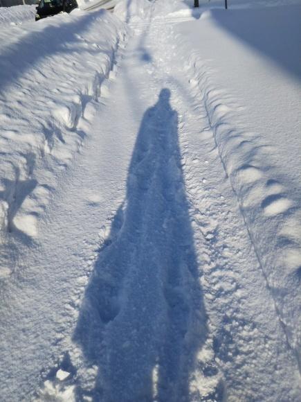 雪景色と、雪のような酵母作り_f0316507_14075739.jpg
