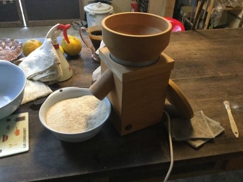 パンからの小麦_e0181260_11312865.jpeg