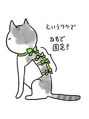 むふ子さん、腹掛け進化形_b0019674_23323966.jpg