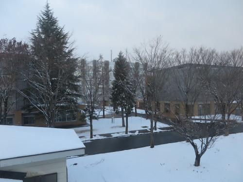 重文本館内巡回&ライトアップ投光器雪囲いボックスの除雪_c0075701_17135461.jpg